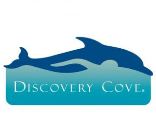 The Discovery Cove Package